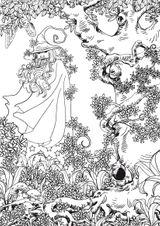 Imprimer le coloriage : Personnages féeriques, numéro c570743f