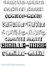 Imprimer le coloriage : Camille, numéro f2364774