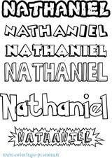 Imprimer le coloriage : Nathan, numéro f5da34cd