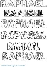 Imprimer le coloriage : Raphaël, numéro 237008d
