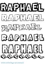Imprimer le coloriage : Raphaël, numéro 3bf8330c
