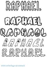 Imprimer le coloriage : Raphaël, numéro 7039f2ec