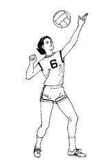 Imprimer le coloriage : Sports, numéro 499480