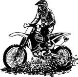 Imprimer le coloriage : Moto, numéro 16899