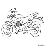 Imprimer le coloriage : Harley-Davidson, numéro 7f66cb37