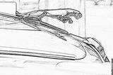 Imprimer le coloriage : Jaguar, numéro 105860