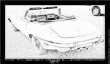 Imprimer le coloriage : Jaguar, numéro 105869