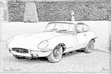 Imprimer le coloriage : Jaguar, numéro 105873