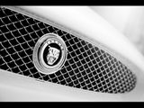 Imprimer le coloriage : Jaguar, numéro 125902