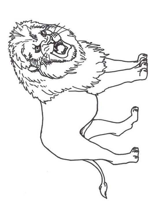 Dessins En Couleurs A Imprimer Lion Numero 24860