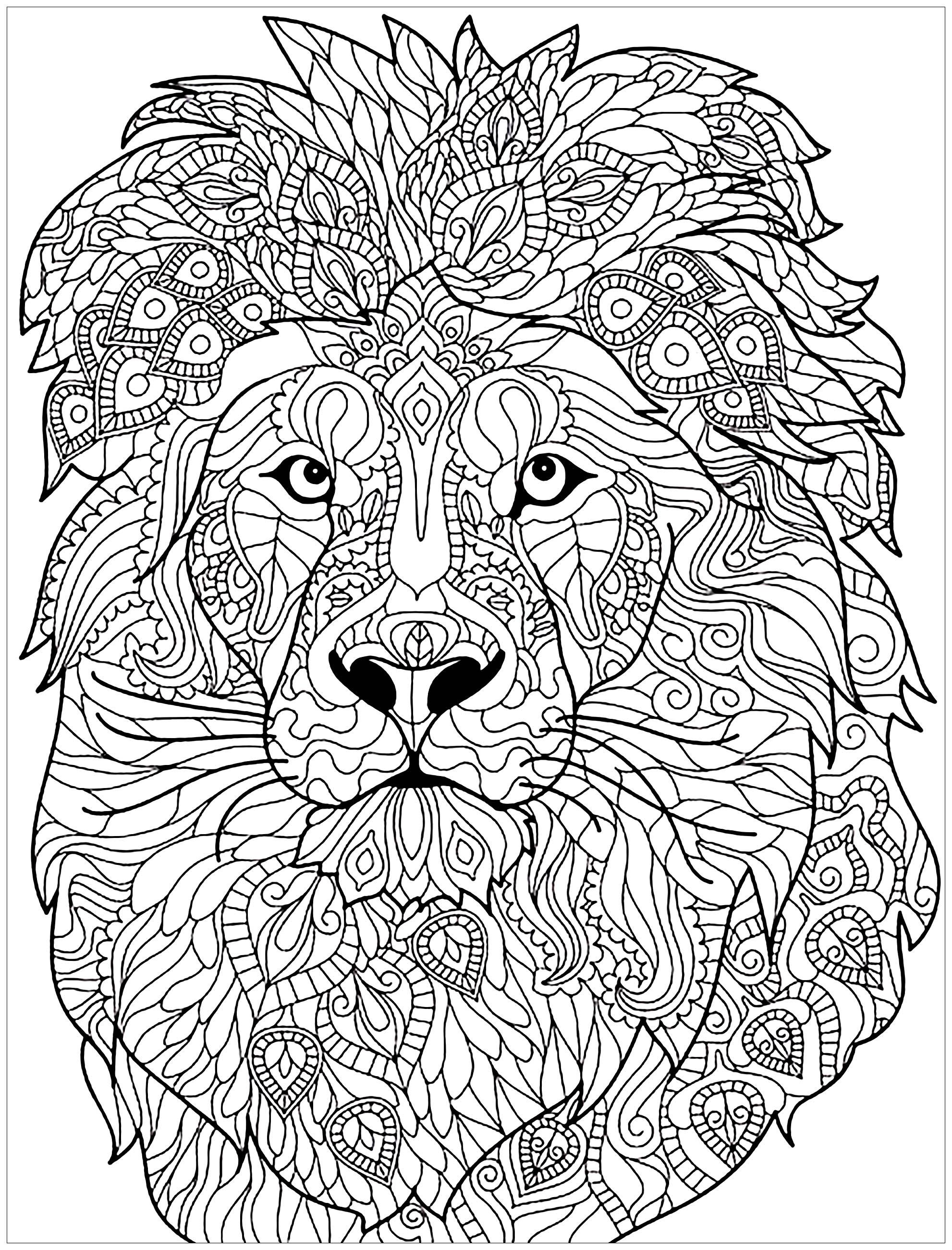 Coloriages A Imprimer Lion Numero 477bf99c