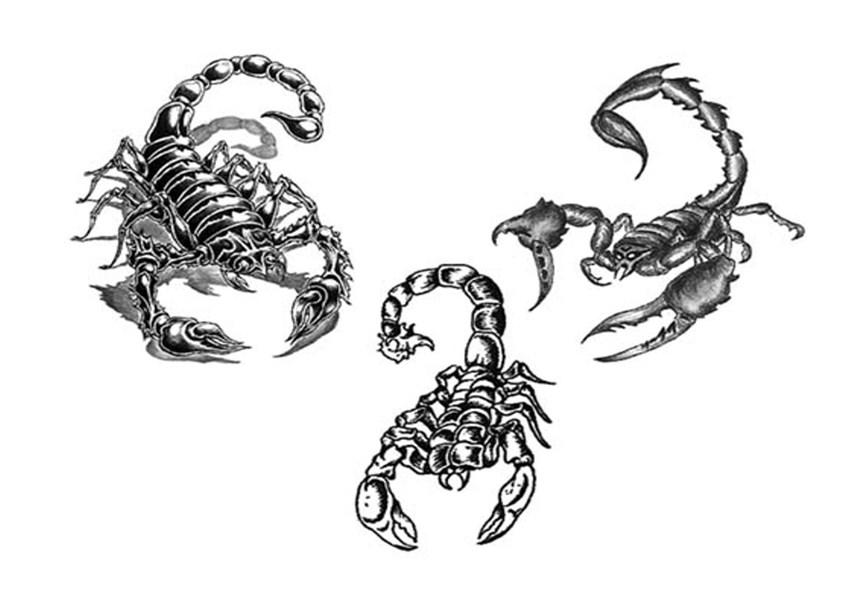 Coloriages à imprimer : Scorpion, numéro : 147595