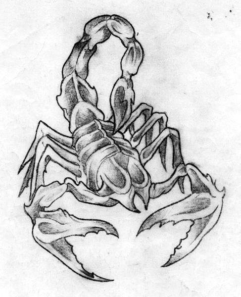 Coloriages à imprimer : Scorpion, numéro : 27605