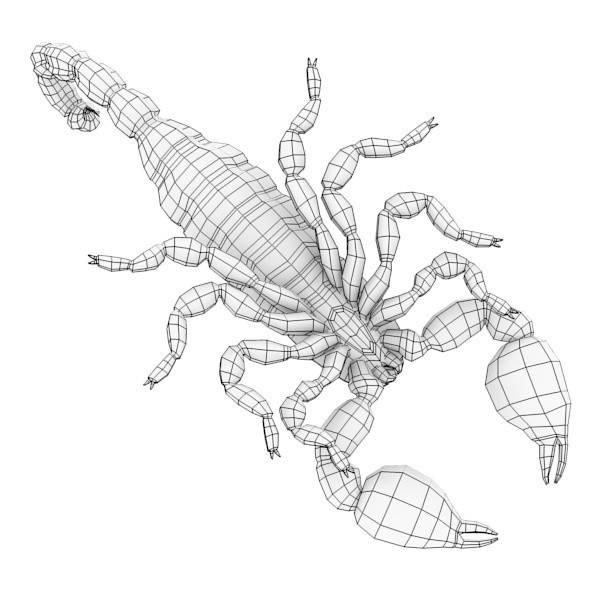 Coloriages à imprimer : Scorpion, numéro : 677057