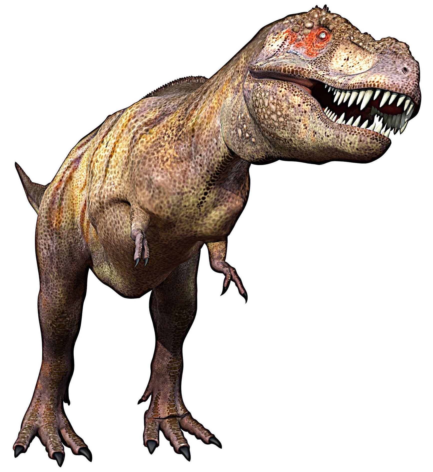 Dessins en couleurs à imprimer : Dinosaures, numéro : 208791