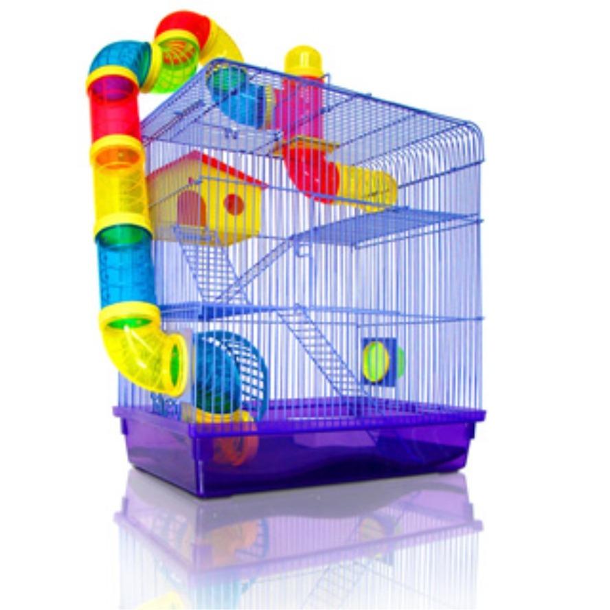 Dessins en couleurs à imprimer : Hamster, numéro : 157298