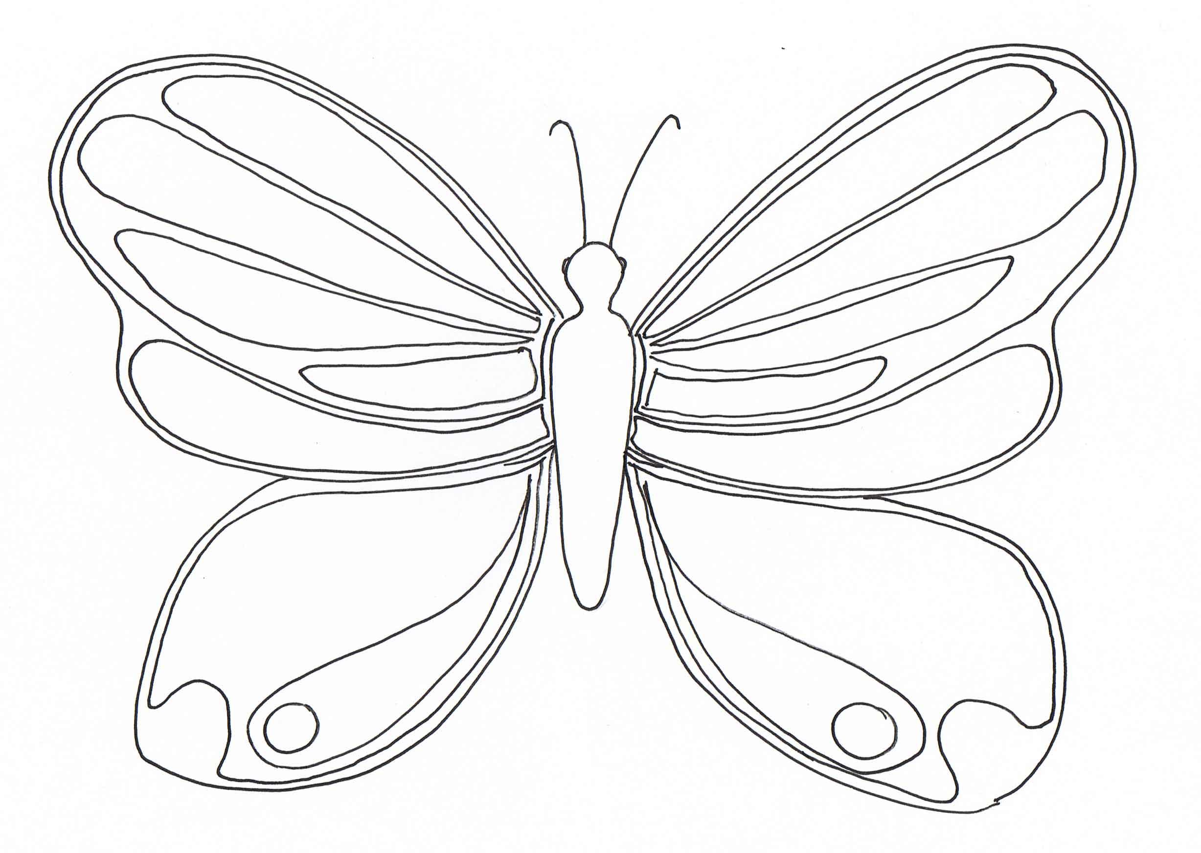 Dessins En Couleurs A Imprimer Insectes Numero 24785