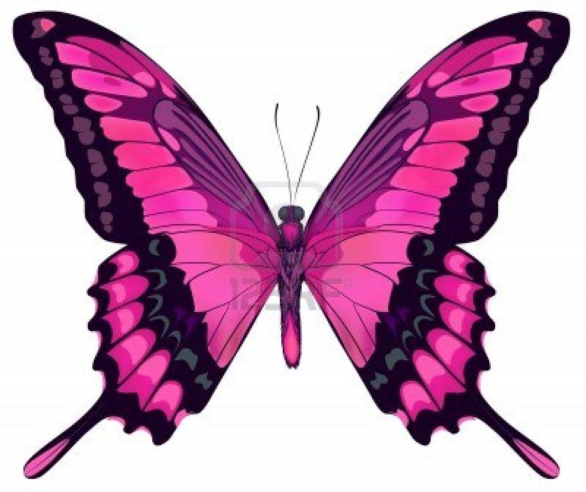 Dessins en couleurs à imprimer : Papillon, numéro : 119761