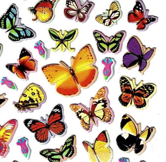 Dessins En Couleurs A Imprimer Papillon Numero 560701