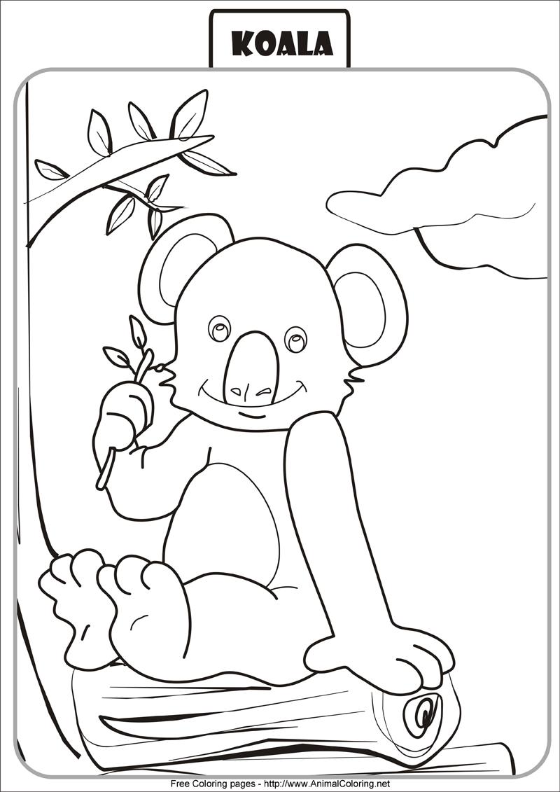 Coloriages A Imprimer Koala Numero 55e8903