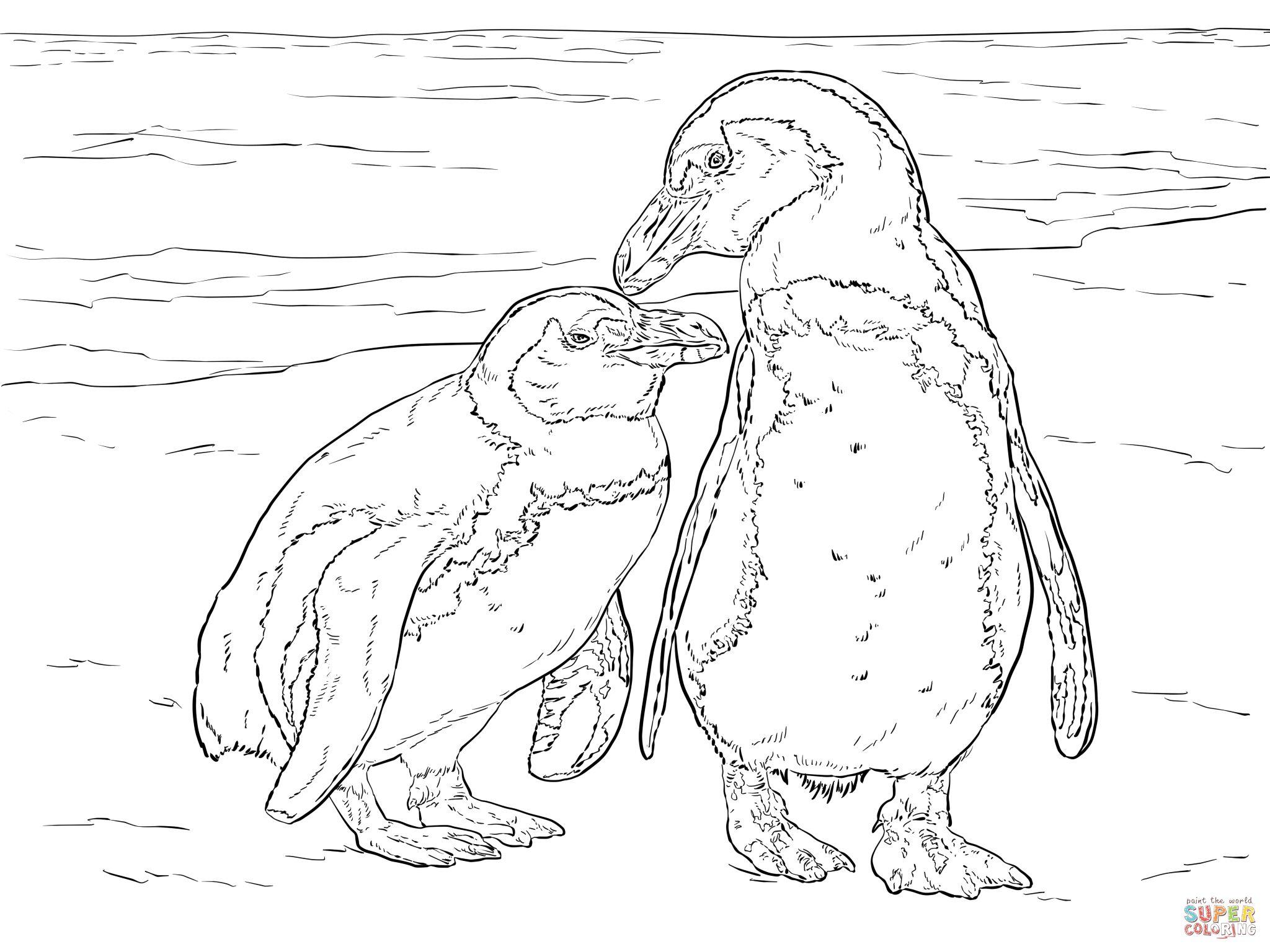 Coloriages à imprimer : Pinguoin, numéro : 11bdca6