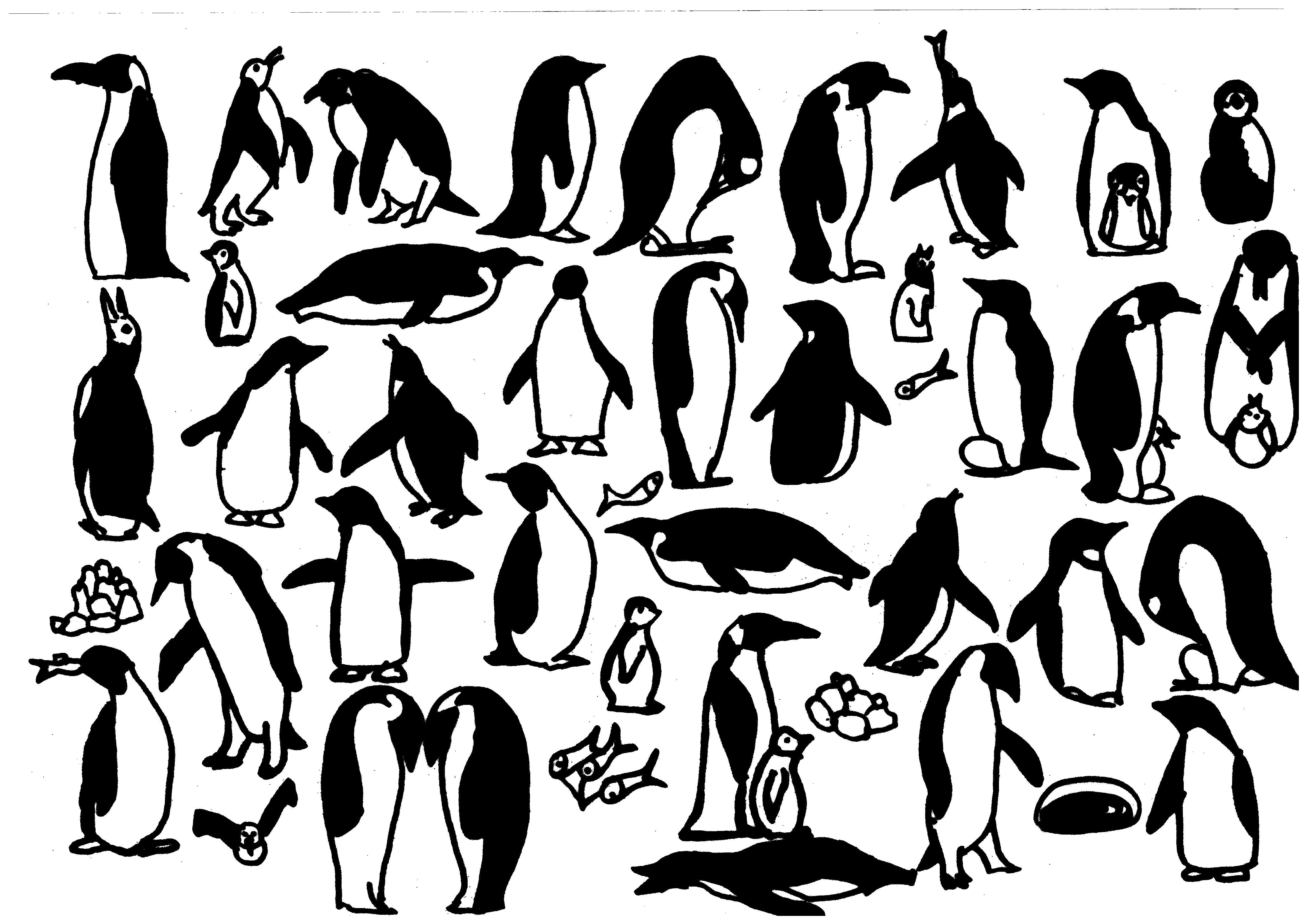 Coloriages à imprimer : Pinguoin, numéro : 29e6ec03
