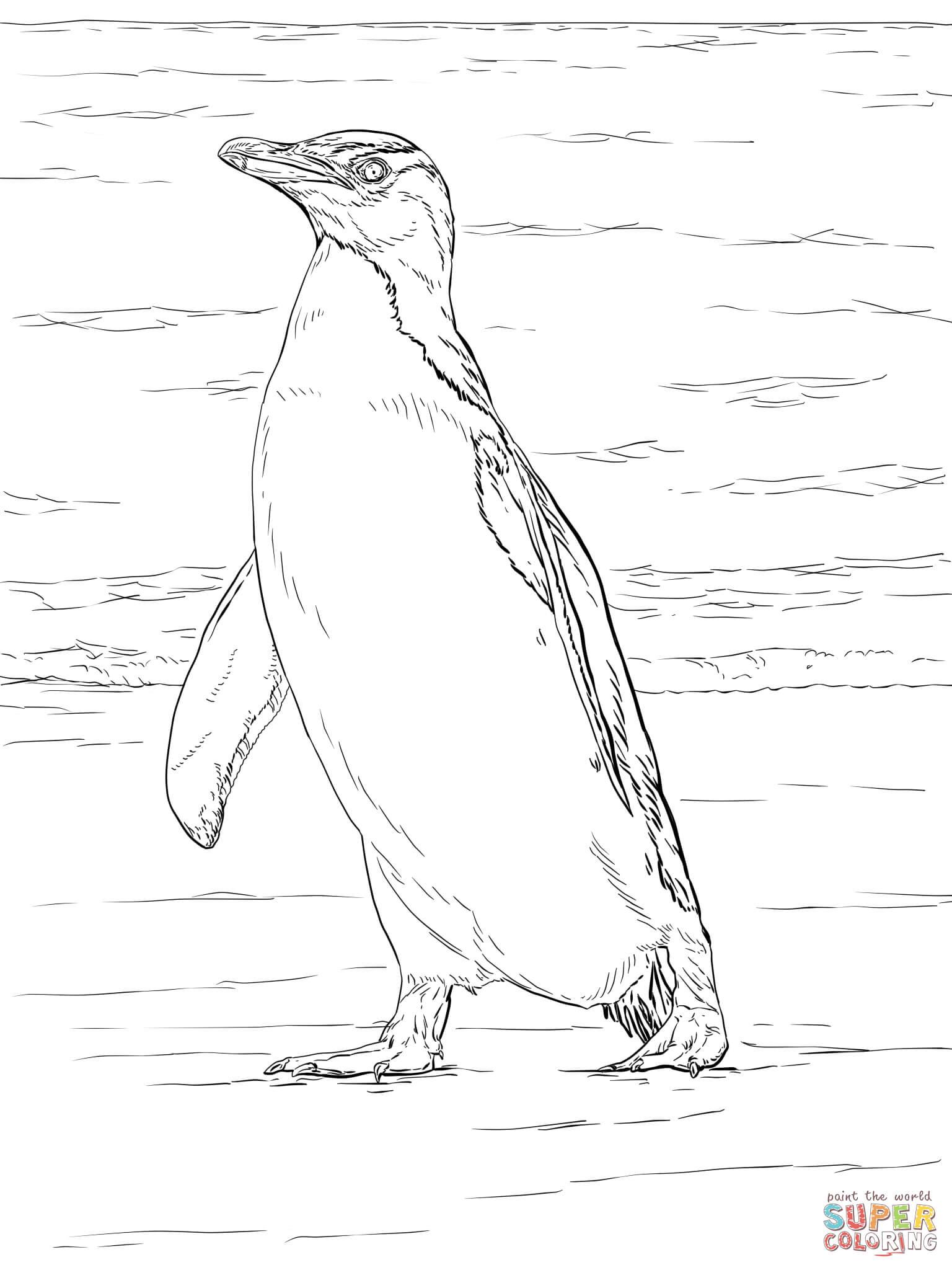Coloriages à imprimer : Pinguoin, numéro : 2b7fcfb8