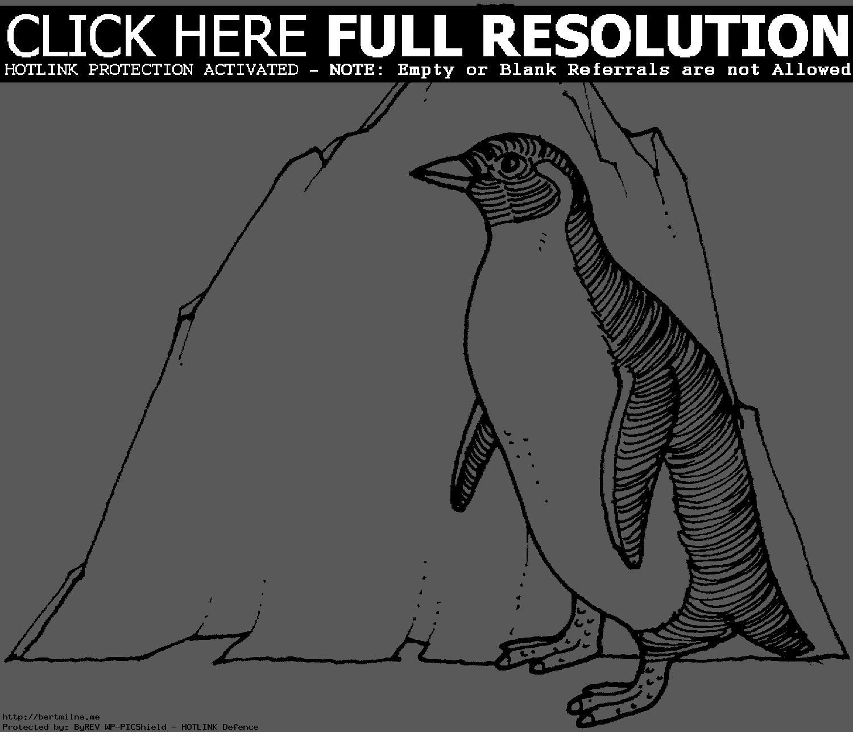 Coloriages à imprimer : Pinguoin, numéro : 3140c5cf
