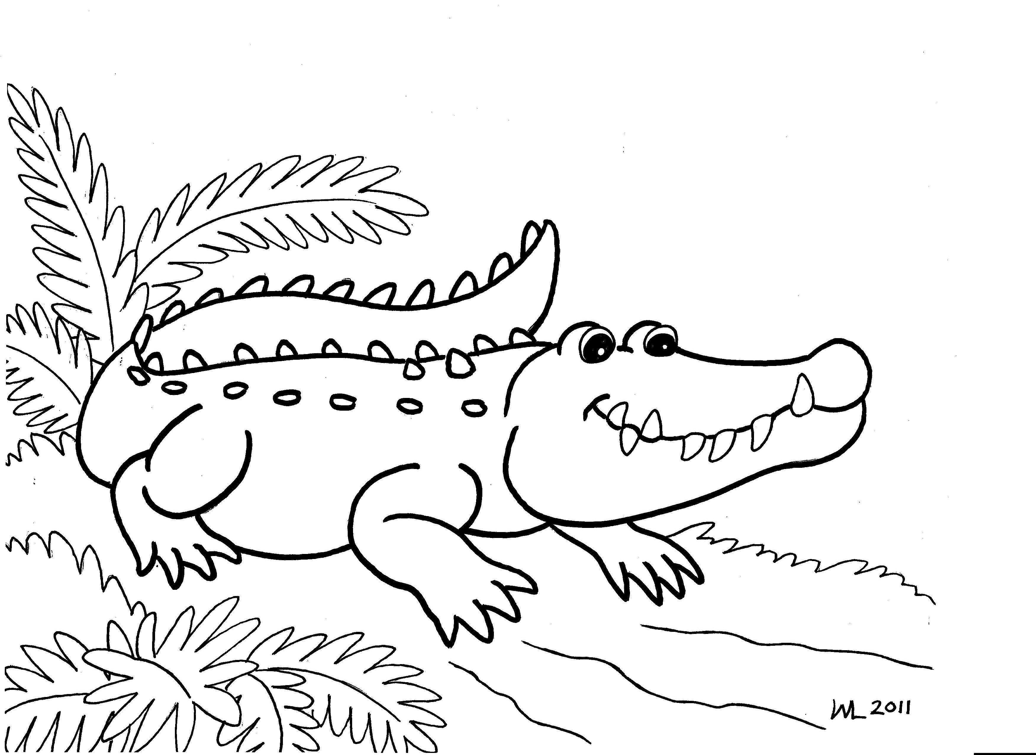 Coloriage Animaux Crocodile.Coloriages A Imprimer Crocodile Numero 64805
