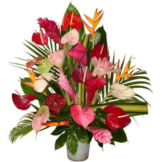 Dessins en couleurs à imprimer : Fleurs, numéro : 210878