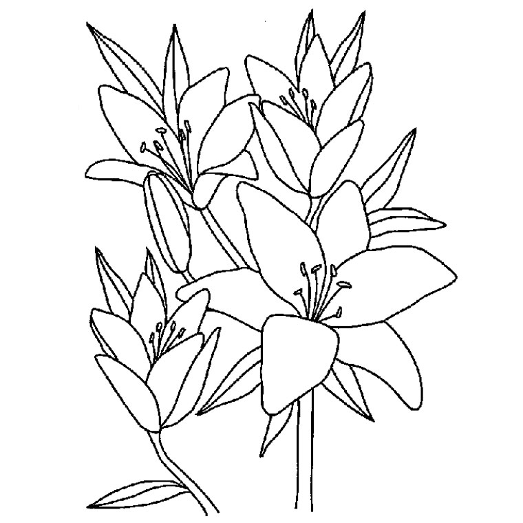 Coloriages à imprimer : Fleurs, numéro : 3136