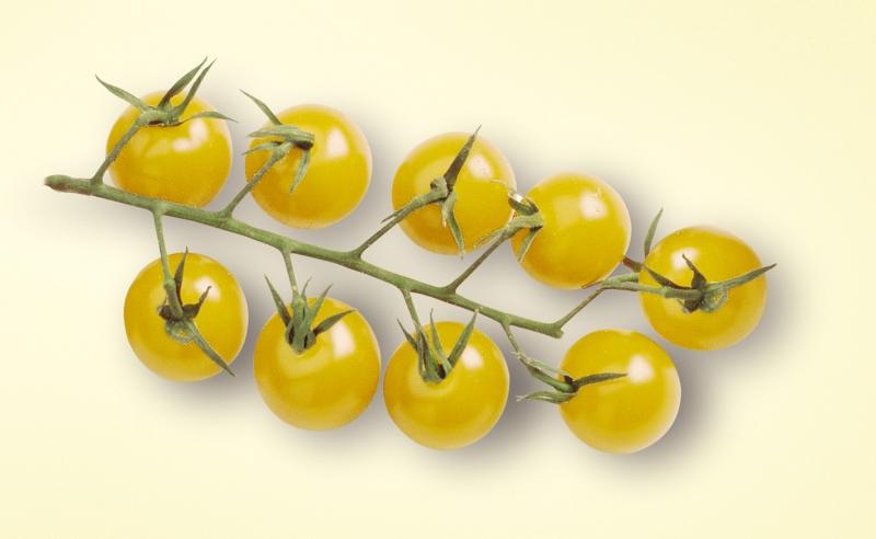 Dessins En Couleurs A Imprimer Tomate Numero 626620