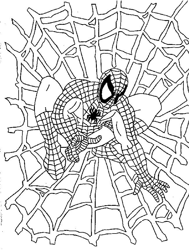 Coloriages A Imprimer Spiderman Numero 16509