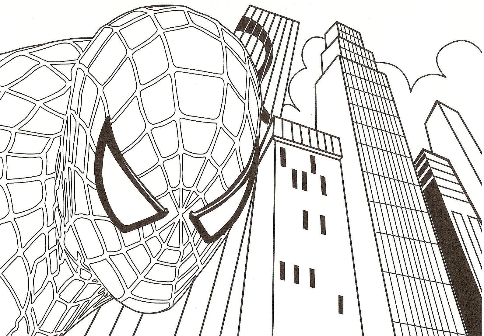 Dessins en couleurs à imprimer : Spiderman, numéro : 18821
