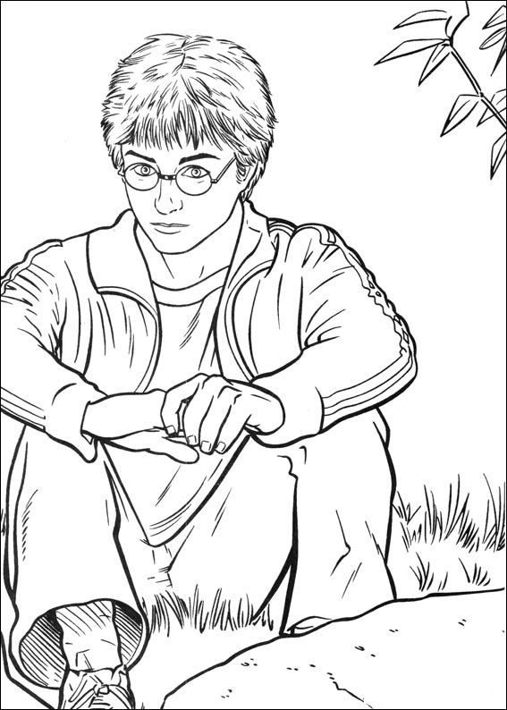 Coloriages à imprimer : Harry Potter, numéro : 113437