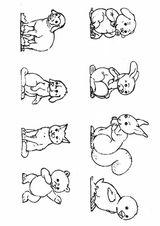 Imprimer le coloriage : Animaux, numéro 113240