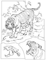 Imprimer le coloriage : Animaux, numéro 4880