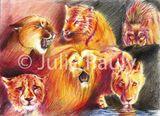 Imprimer le dessin en couleurs : Animaux carnivores, numéro 119577