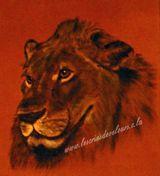 Imprimer le dessin en couleurs : Animaux carnivores, numéro 119582