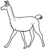 Imprimer le coloriage : Animaux carnivores, numéro 130460