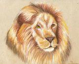 Imprimer le dessin en couleurs : Animaux carnivores, numéro 158440