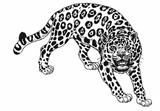 Imprimer le coloriage : Animaux carnivores, numéro 170456
