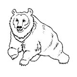 Imprimer le coloriage : Animaux carnivores, numéro 23885