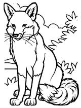 Imprimer le coloriage : Animaux carnivores, numéro 25731
