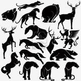 Imprimer le coloriage : Animaux carnivores, numéro 64690
