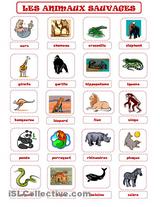 Imprimer le dessin en couleurs : Animaux carnivores, numéro 74077