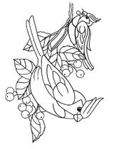 Imprimer le dessin en couleurs : Arachnides, numéro 59729