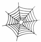 Imprimer le coloriage : Araignée, numéro 130432