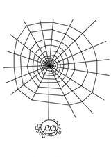 Imprimer le coloriage : Araignée, numéro 130441
