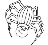 Imprimer le coloriage : Araignée, numéro 142566